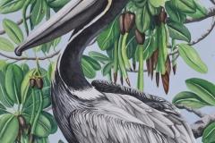 Pelican-Grove-web
