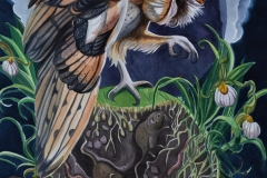 The World of the barn owl