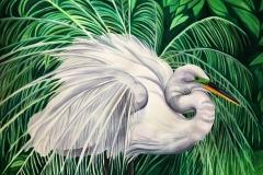 Elegant-Egret